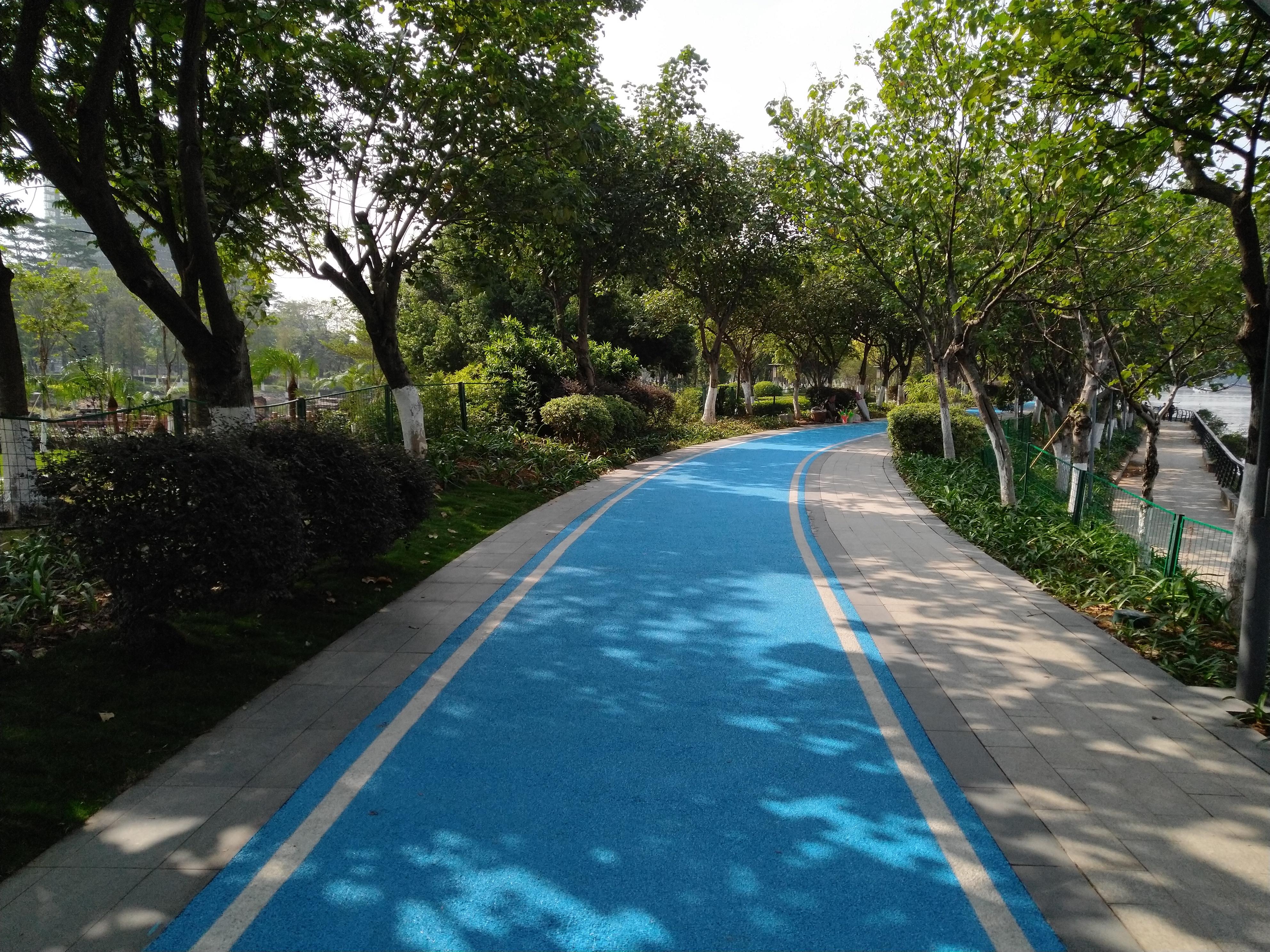 官洲生物岛,最适合骑行的地方,这里有四季花景
