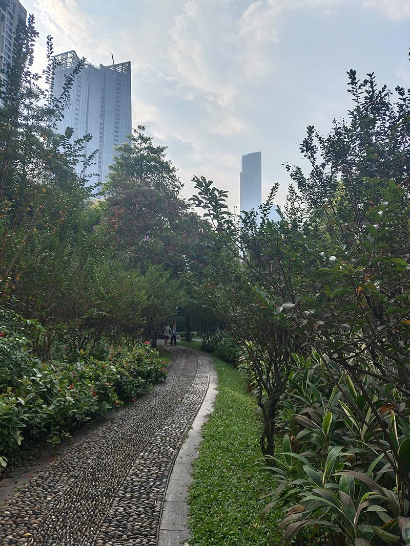 碎步珠江公园,市中心一块神奇的秘境之地